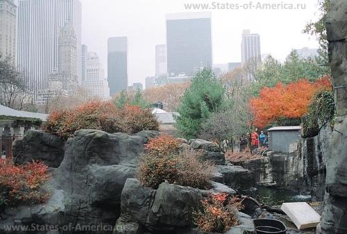 Зоопарк Центрального парка