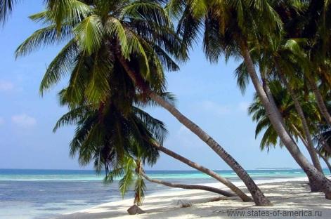 Отдых в США - Майами